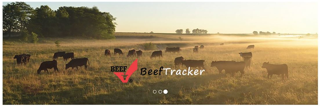 sustainability-beef-tracker-figure-1